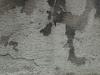 Grunge_Texture_A_P8299369