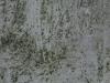 Grunge_Texture_A_P9209729