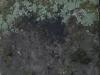 Grunge_Texture_A_PA035637