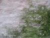 Grunge_Texture_B_0760