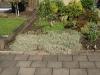 Plants-Bushes_Photo_Texture_B_P6153440
