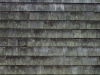 Roof_Texture_A_PB236792