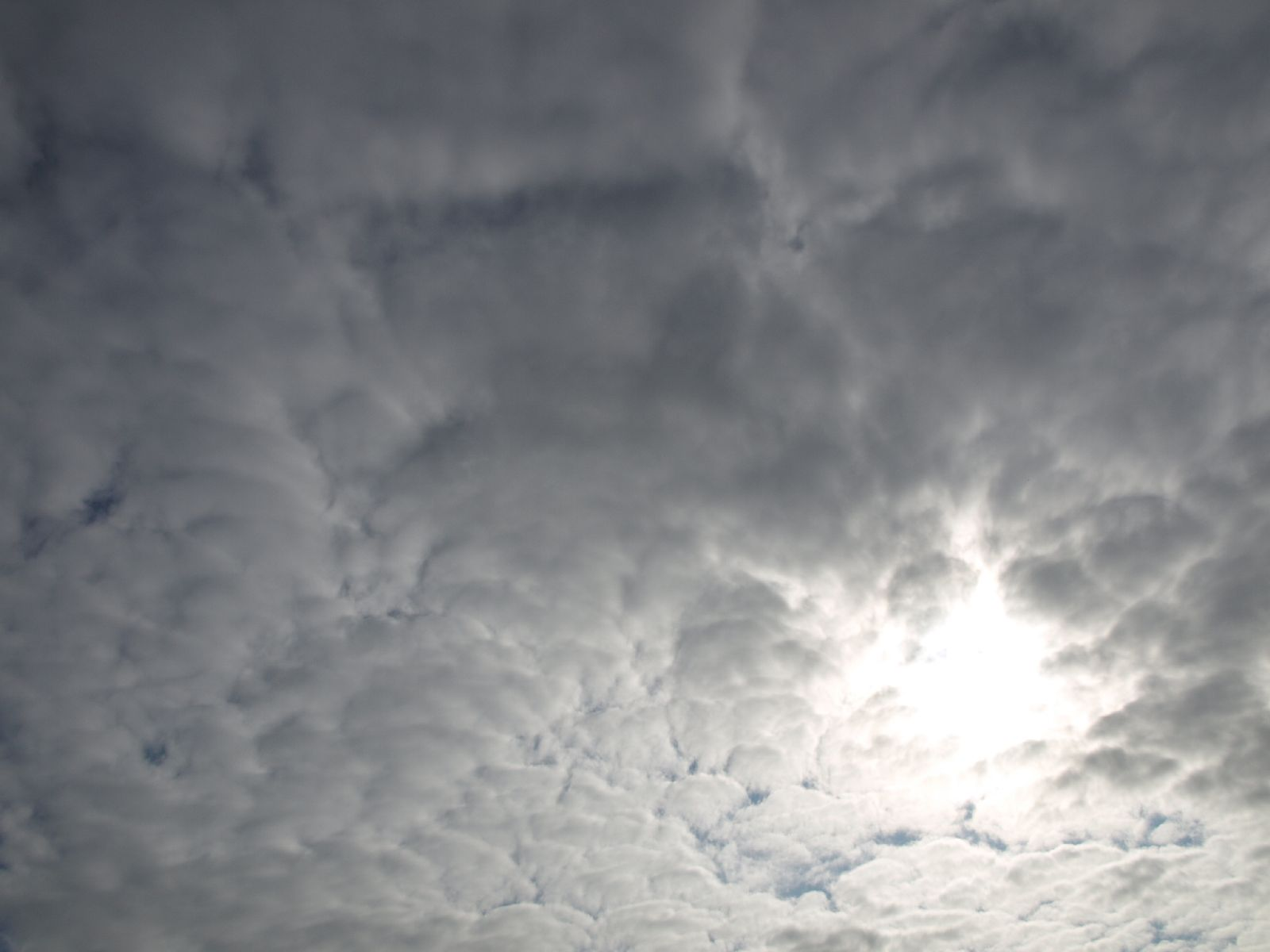 Sky_Clouds_Photo_Texture_A_P5022094