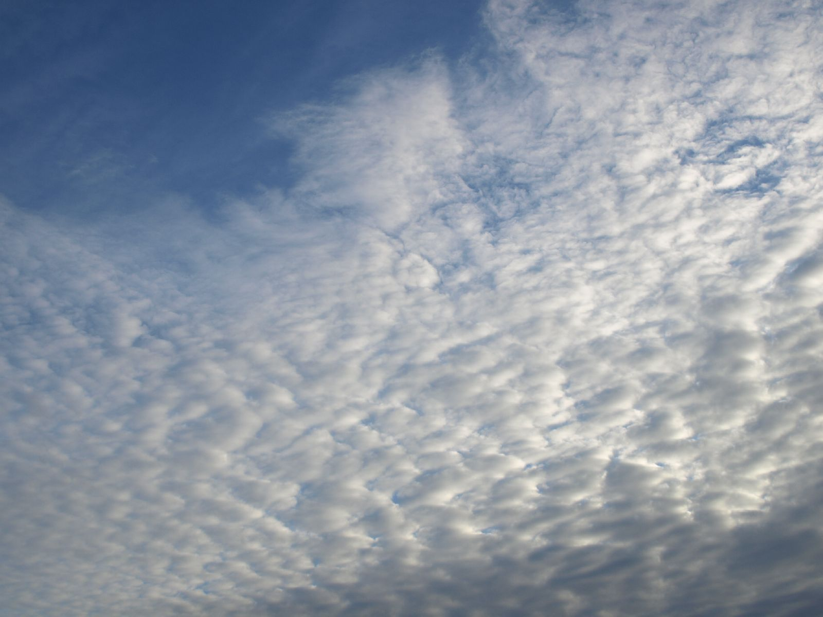 Sky_Clouds_Photo_Texture_A_P8024089