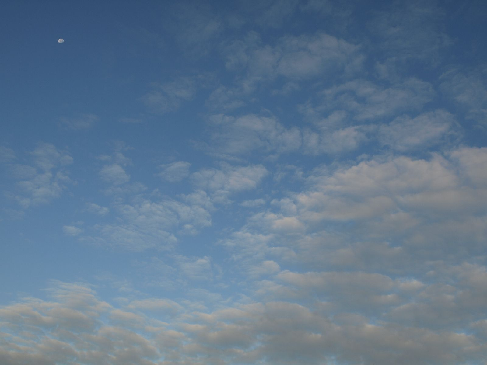 Sky_Clouds_Photo_Texture_A_P8214531