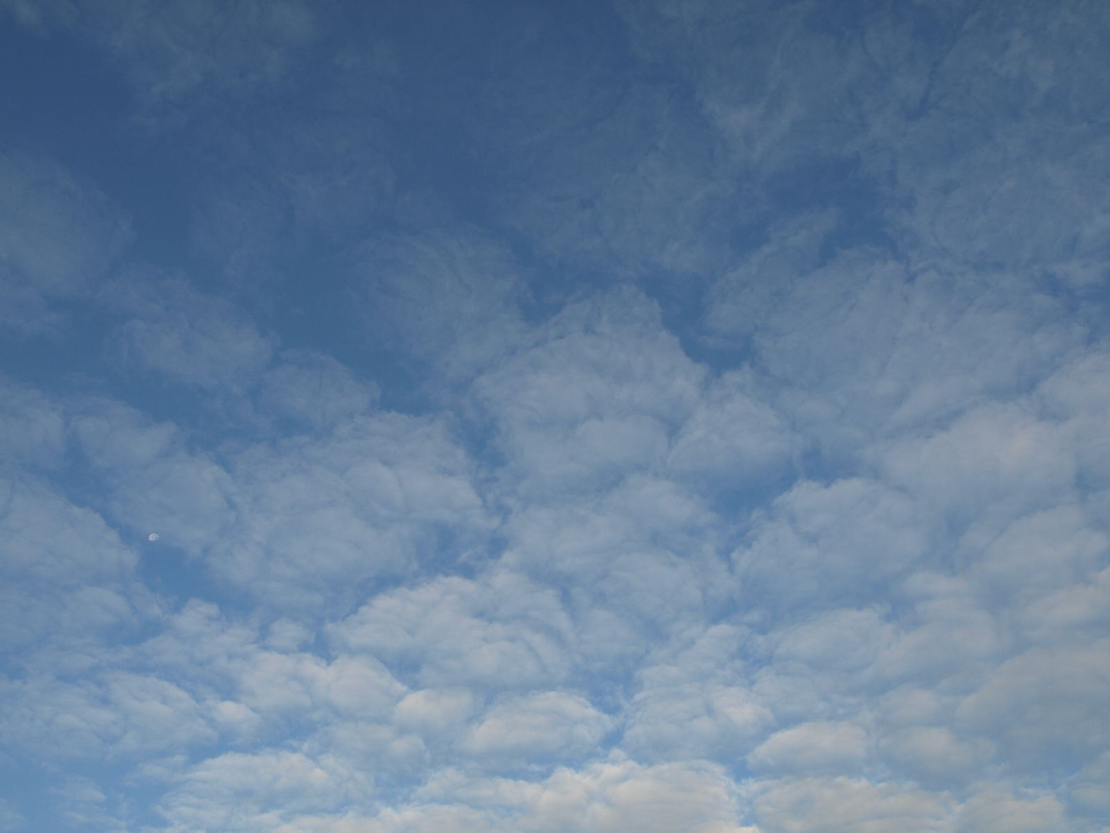 Sky_Clouds_Photo_Texture_A_P8214562