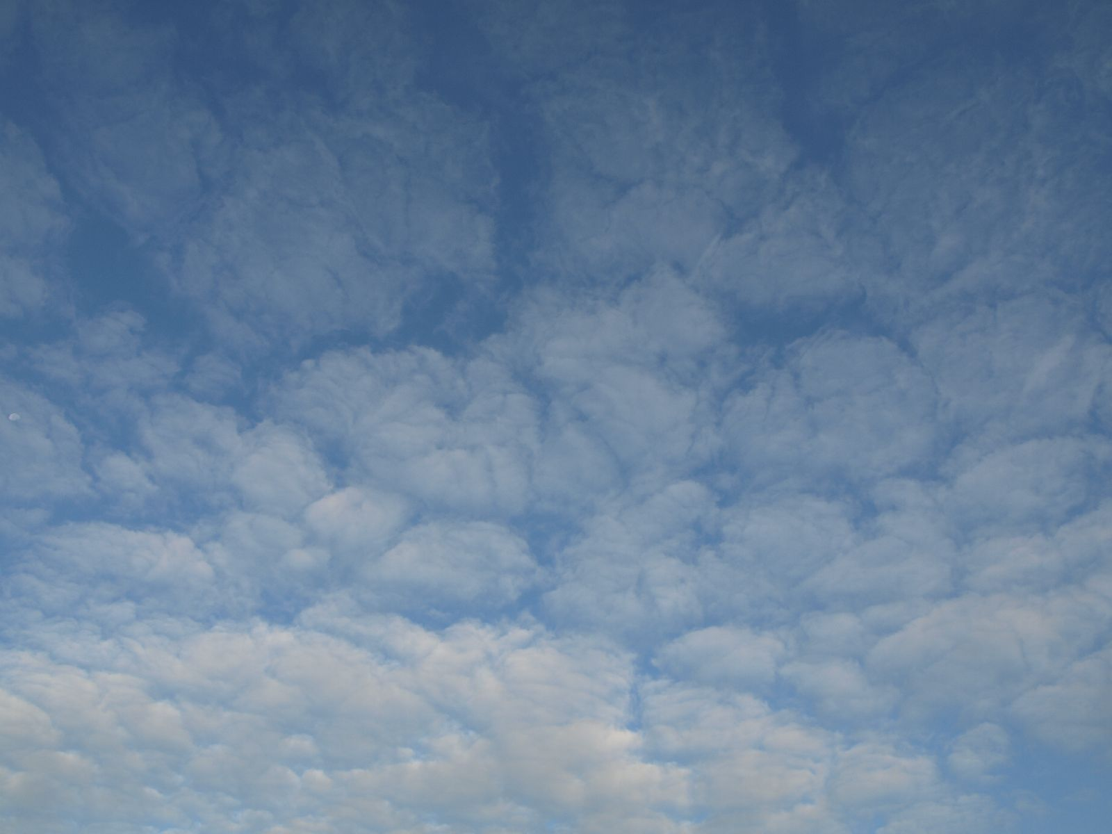 Sky_Clouds_Photo_Texture_A_P8214566