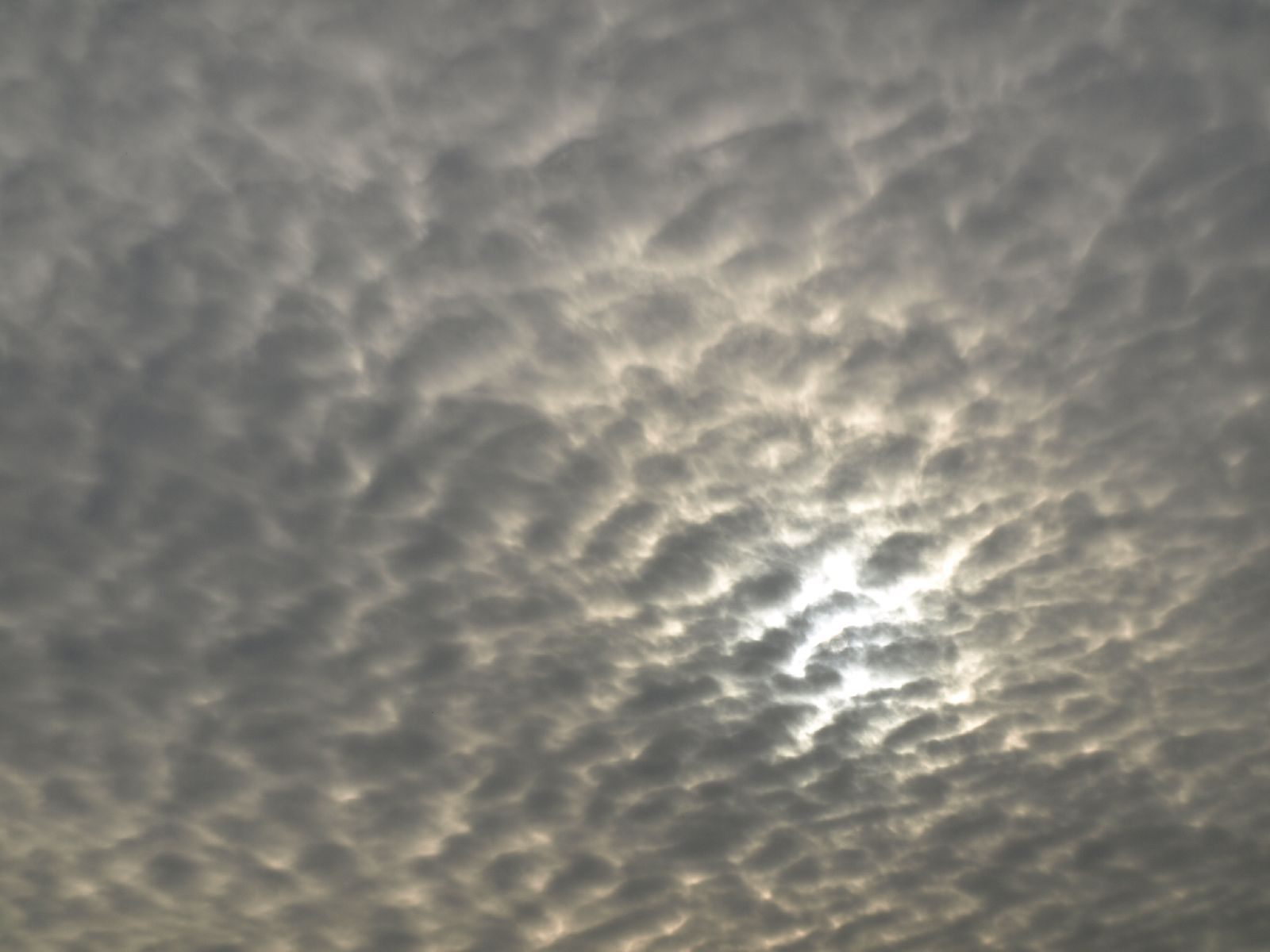Sky_Clouds_Photo_Texture_A_P9195160
