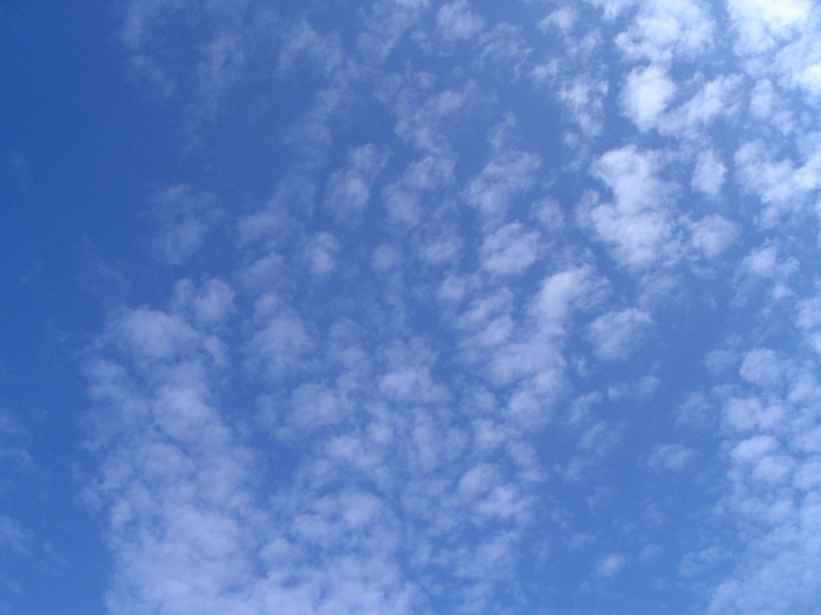 Sky_Clouds_Photo_Texture_B_1902