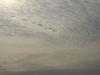 Sky_Clouds_Photo_Texture_A_P9195050
