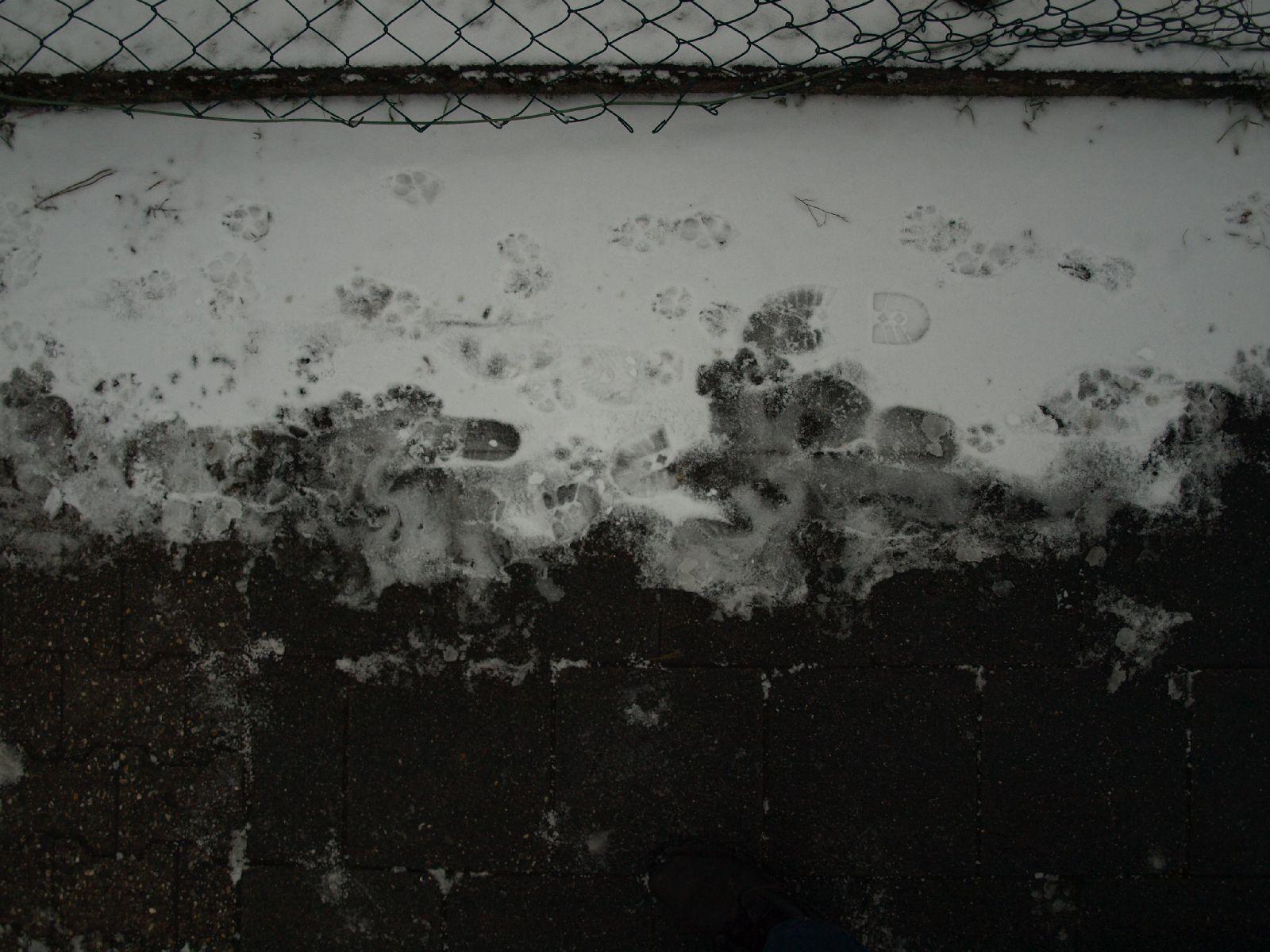 Snow_Texture_A_P1028716