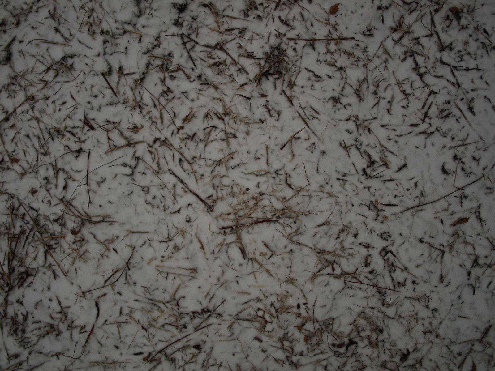 Snow_Texture_A_P1028736