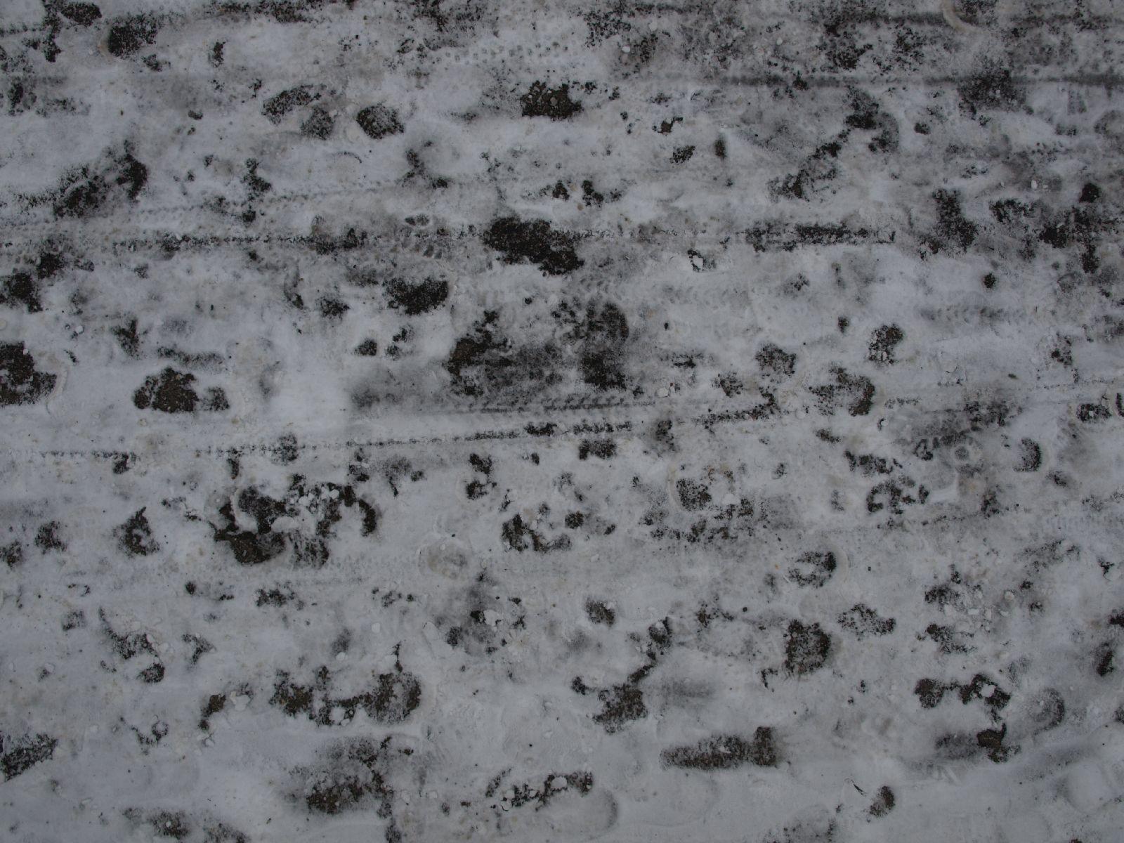 Snow_Texture_A_P1048797