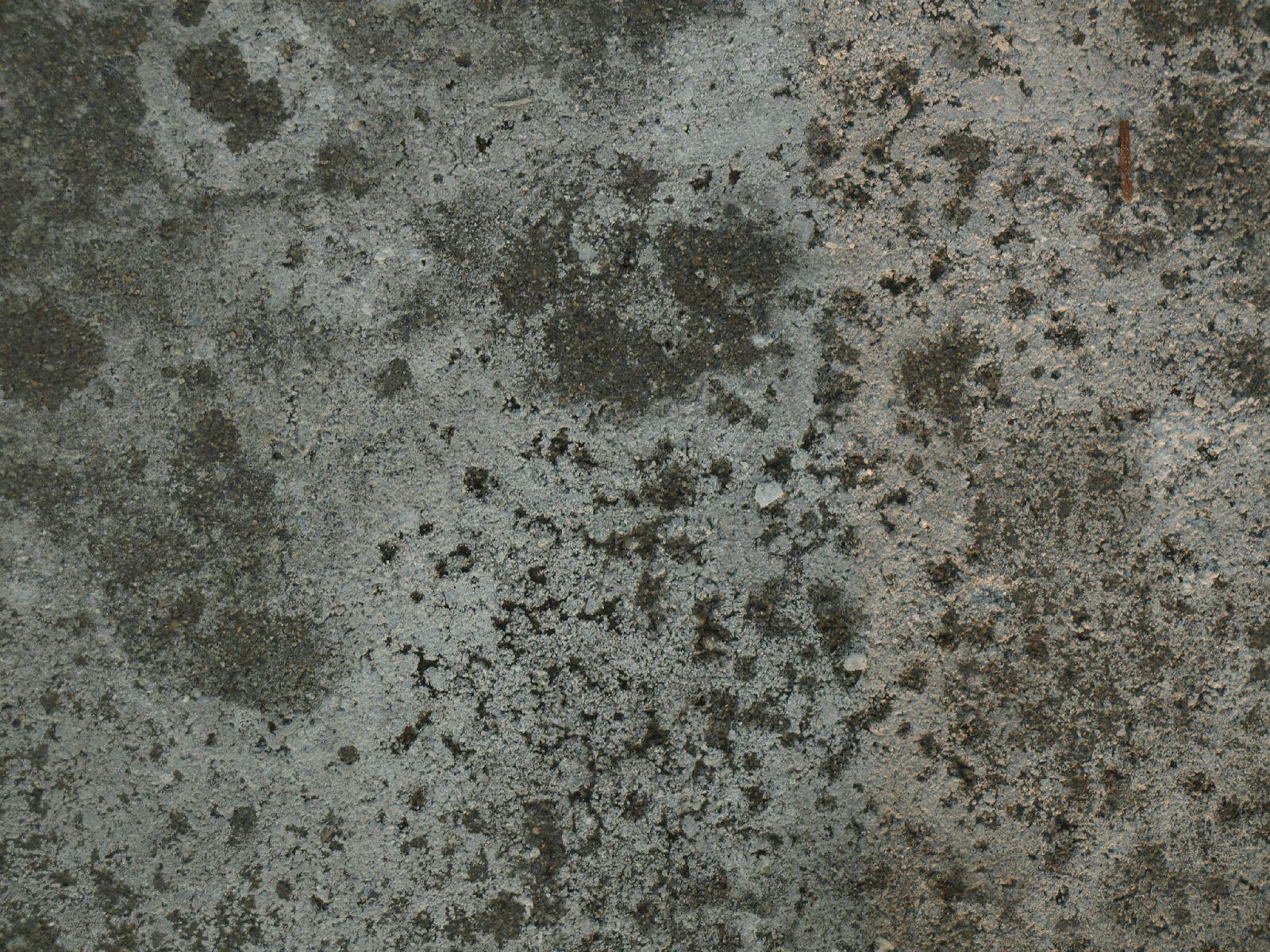Snow_Texture_A_P1109053