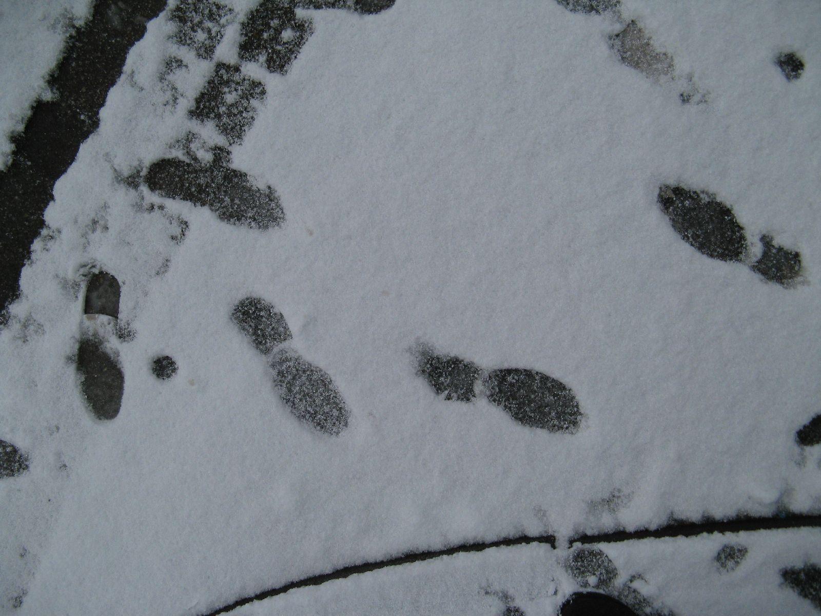 Snow_Texture_B_5823