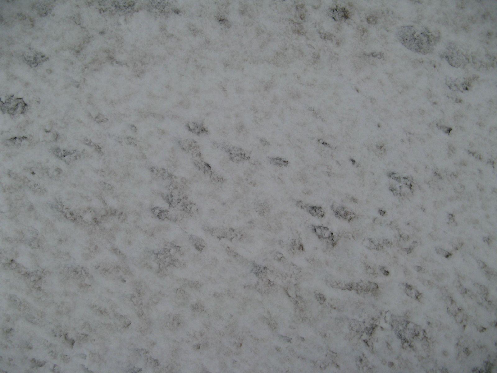 Snow_Texture_B_5890