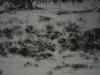 Snow_Texture_A_P1028728