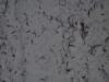 Snow_Texture_A_P1038775