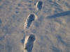 Snow_Texture_A_P1109027