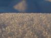 Snow_Texture_A_P1109047
