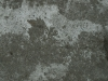 Snow_Texture_A_P1109052