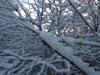 Snow_Texture_A_PB226715