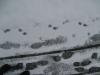Snow_Texture_B_5824