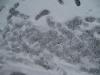 Snow_Texture_B_5830