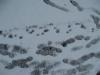 Snow_Texture_B_5831