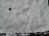 Snow_Texture_B_5839