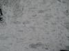 Snow_Texture_B_5889
