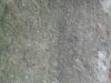 Stone_Texture_B_0571