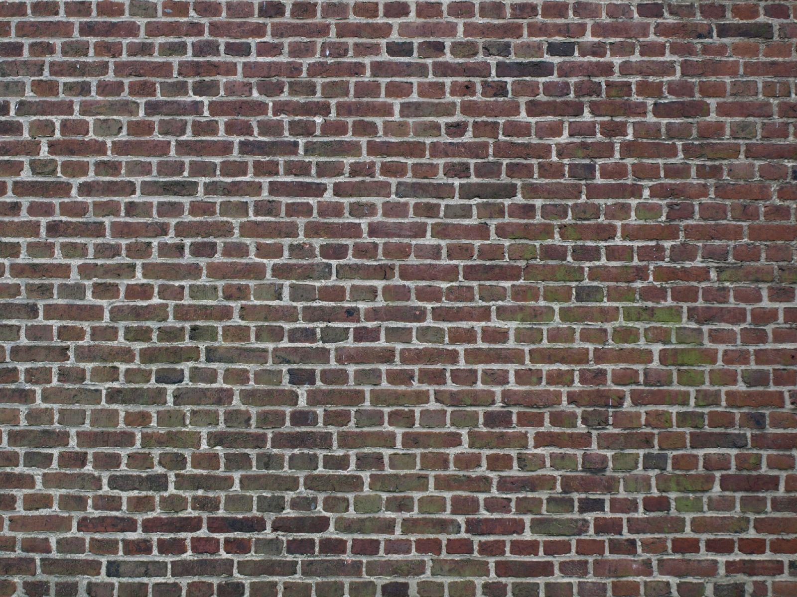 Brick_Texture_A_P6063263