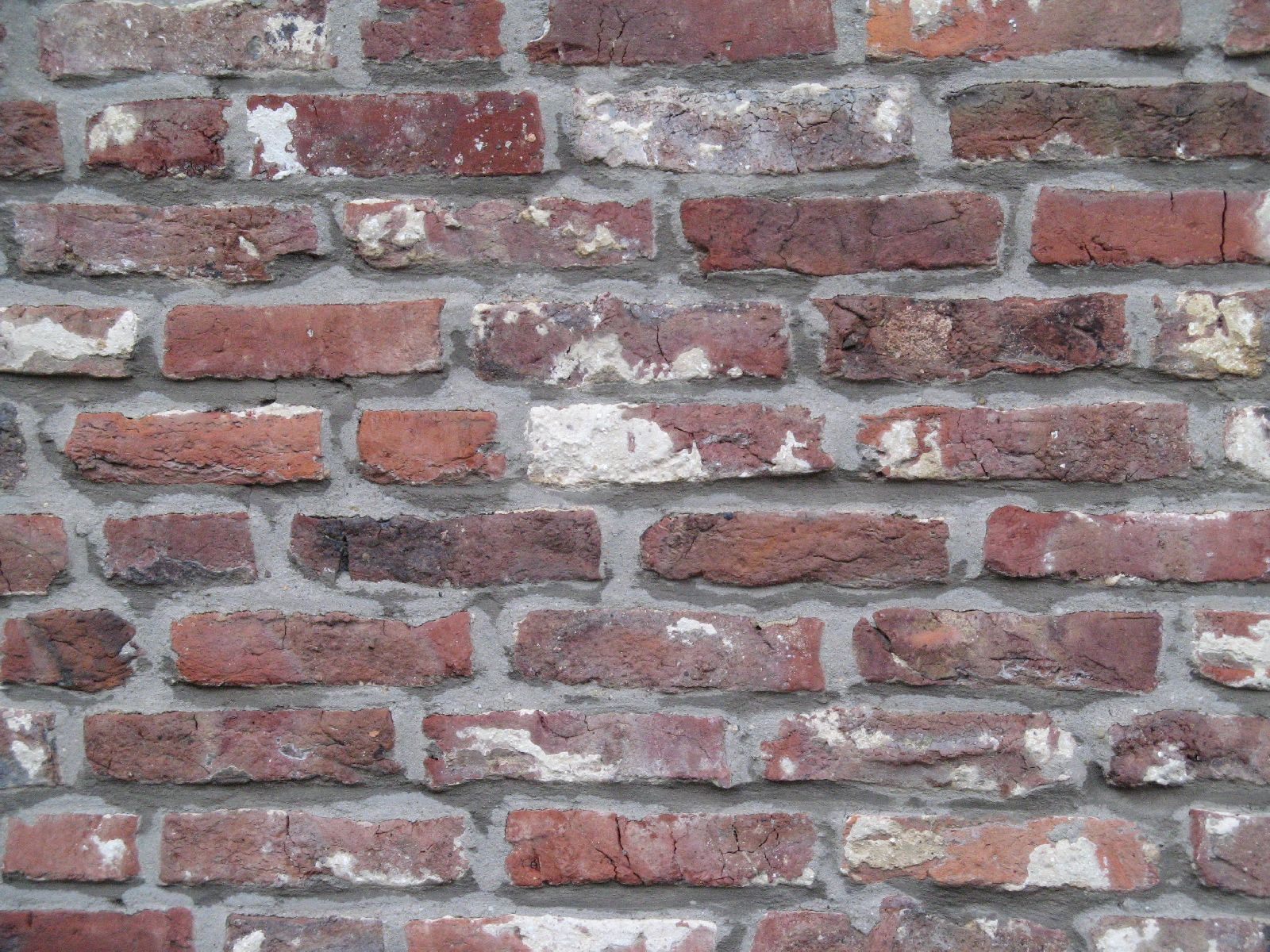 Brick_Texture_B_5869
