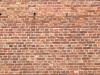 Brick_Texture_A_P7128549