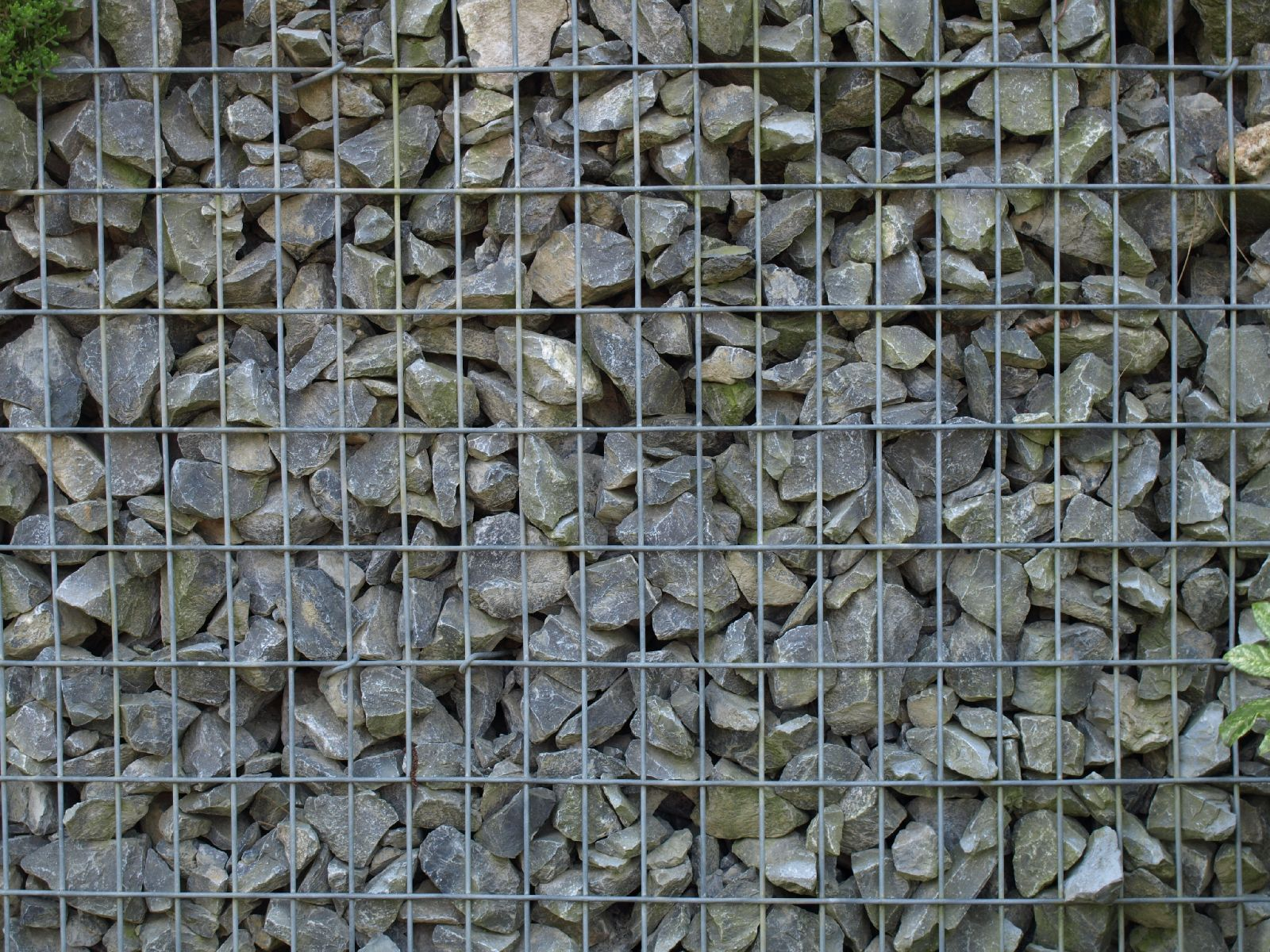 Stone_Texture_A_P4221653