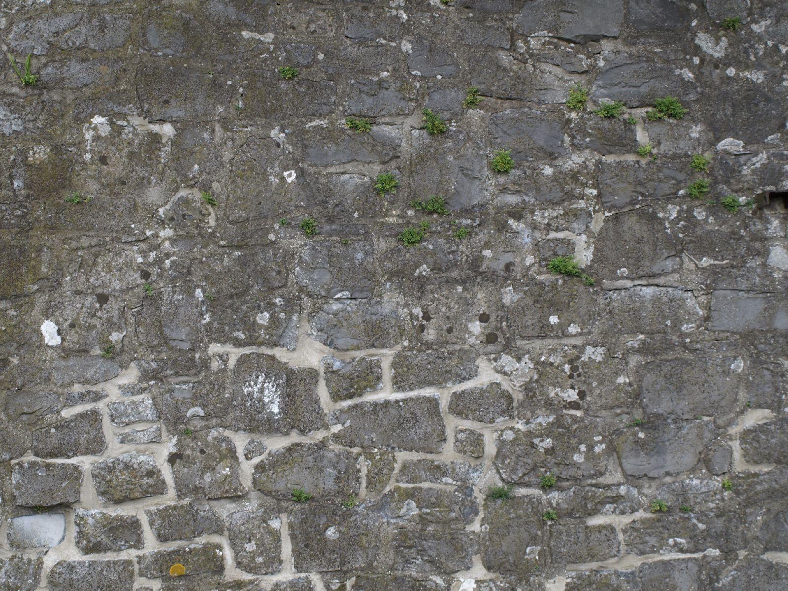 Brick_Texture_A_P8174453