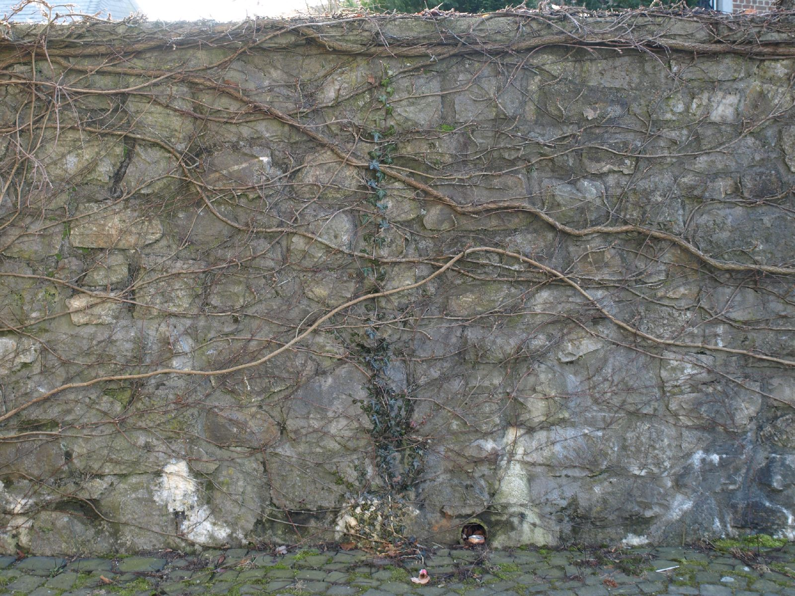 Stone_Texture_A_P1259903