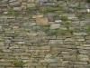 Brick_Texture_A_P5305422