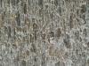 Brick_Texture_B_1727