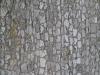 Brick_Texture_B_4811