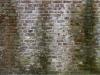 Brick_Texture_A_BT1001