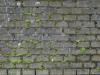 Brick_Texture_A_BT1284