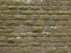 Brick_Texture_A_P5313082