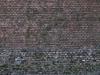 Brick_Texture_B_01131
