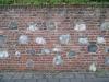 Brick_Texture_B_01284