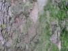 Wood_Textures_B_08930