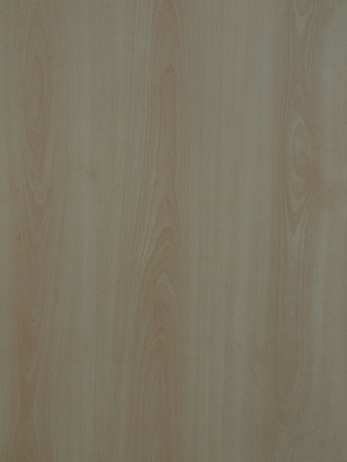 Wood_Texture_A_P1028709