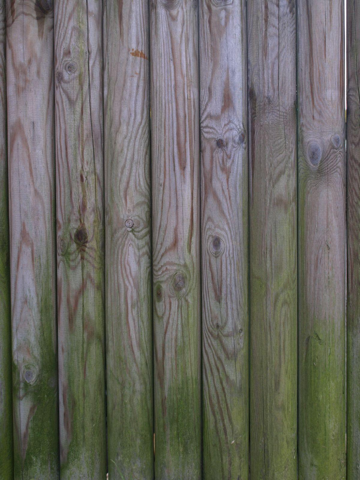 Wood_Texture_A_P1189439