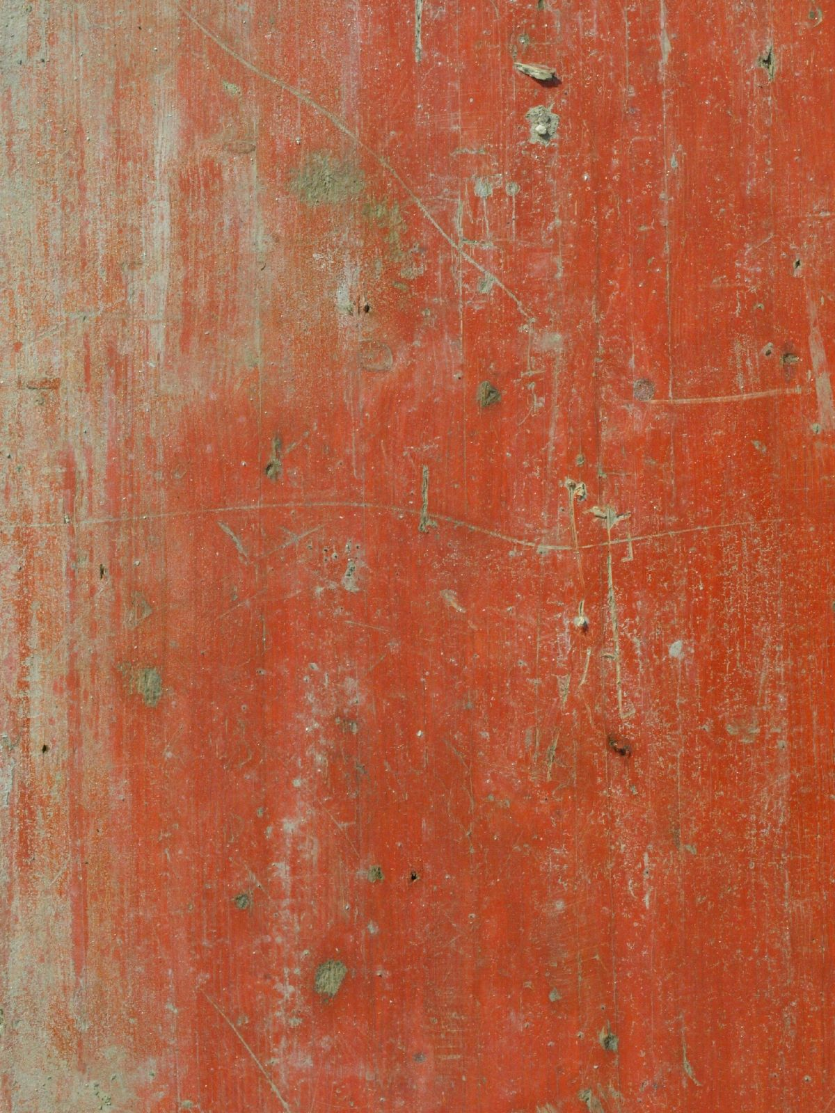 Wood_Texture_A_P3151340